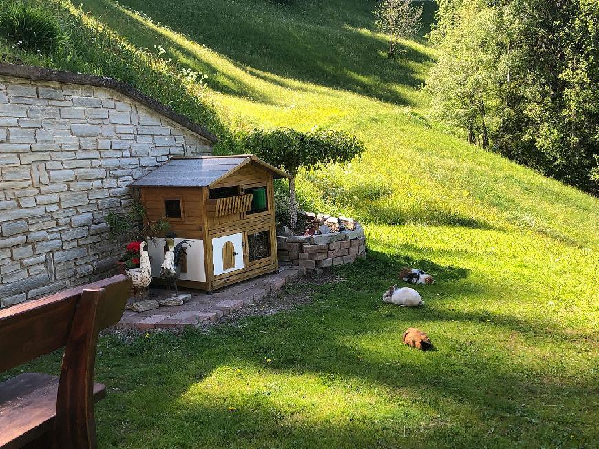 Ferienwohnung  1 auf dem Bauernhof - Flatscherhof